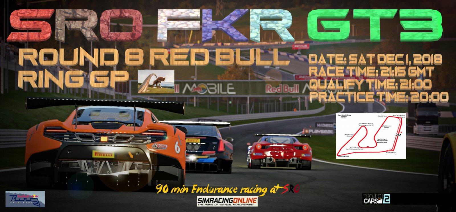 fkr gt3 red bull banner.jpg